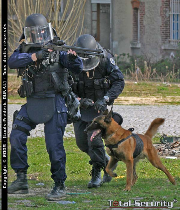 http://www.loup.org/spip/IMG/jpg/gign-section-cyno-1-g.jpg
